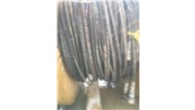 Hydraulic_hoses_(good_condition)_(2)